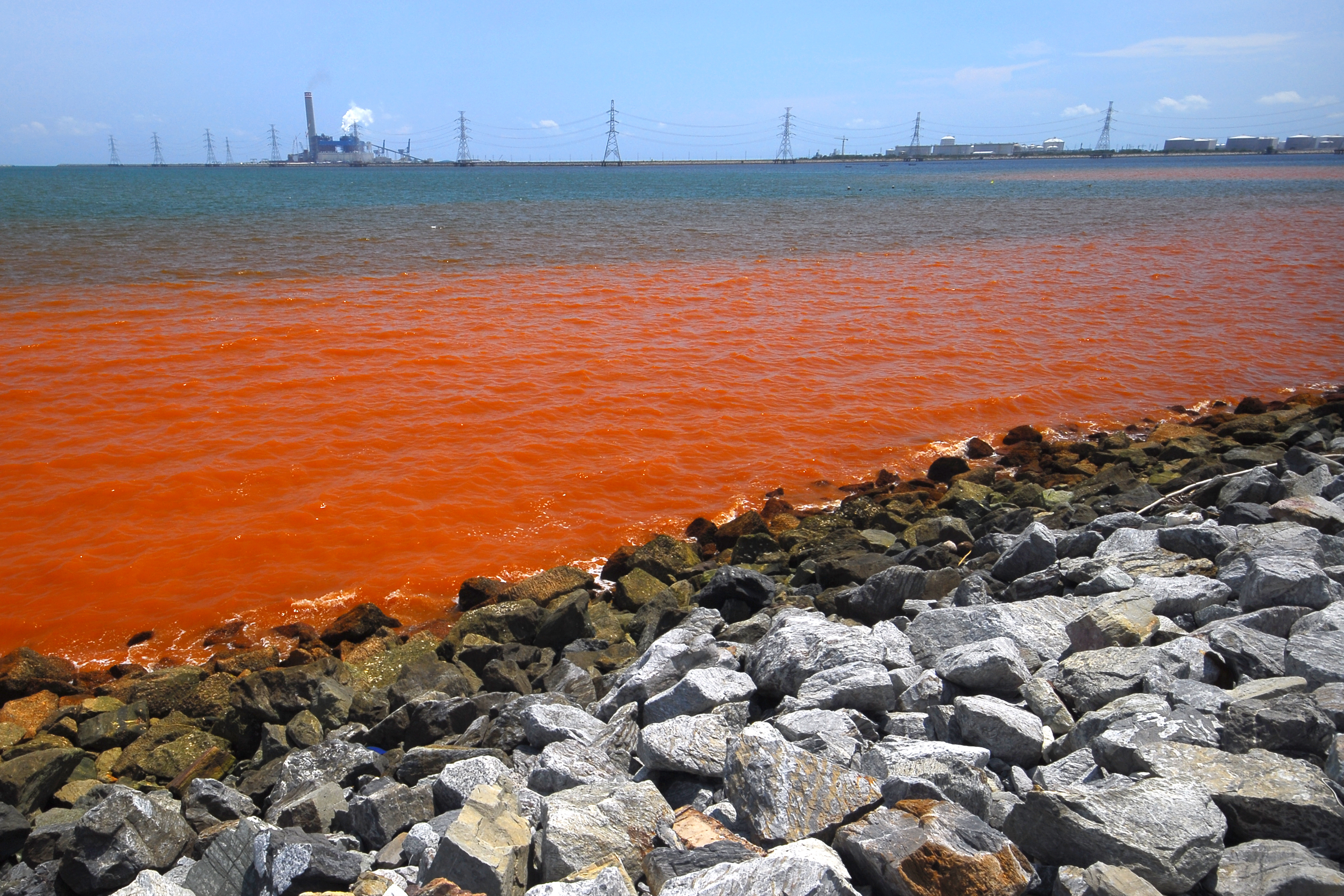 pollution of great lakes and seas